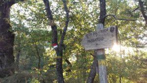 1-sentiero-degli-etruschi